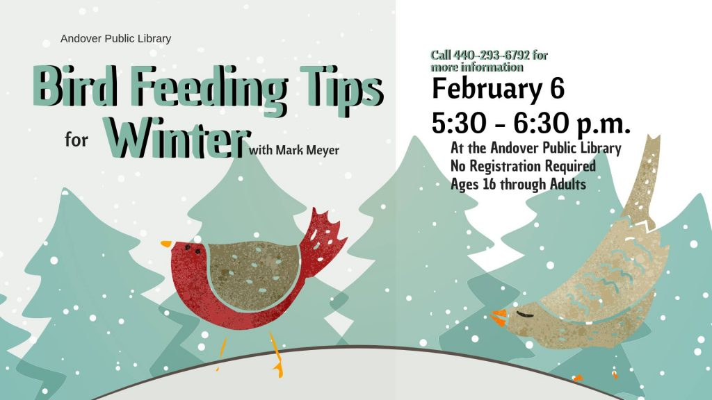 Bird Feeding Tips at Andover Public Library